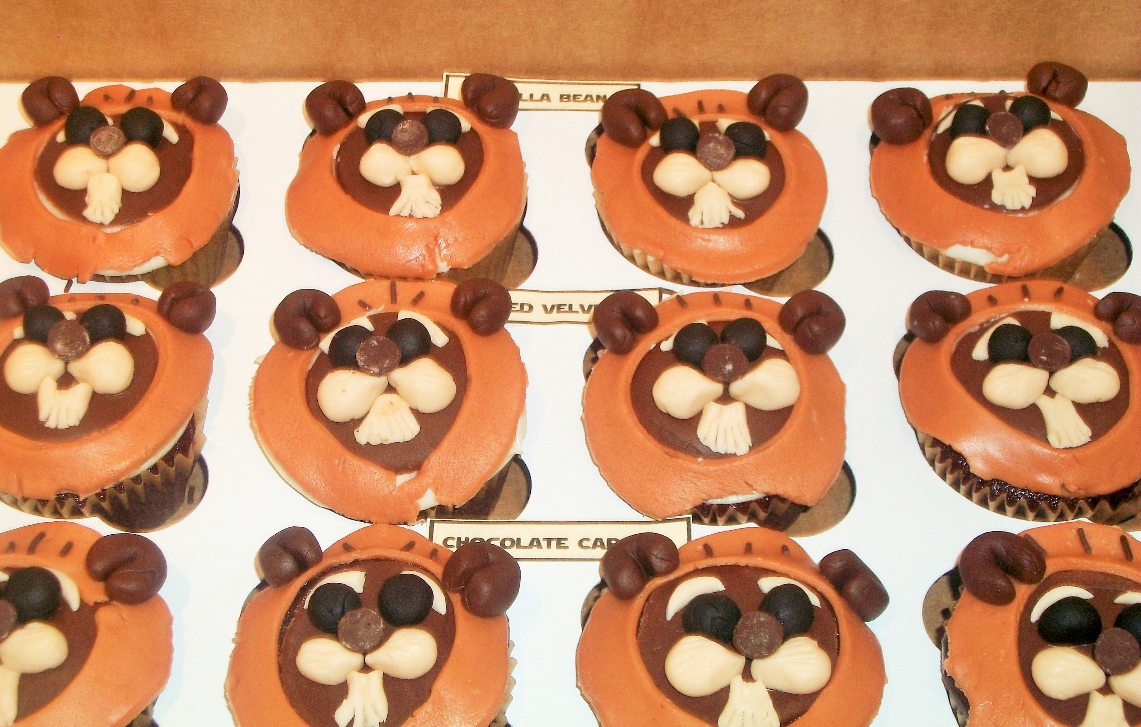 Ewok Cupcakes